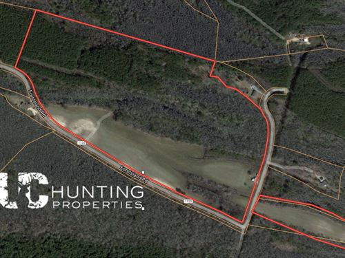 Hunting Land : Eure : Gates County : North Carolina