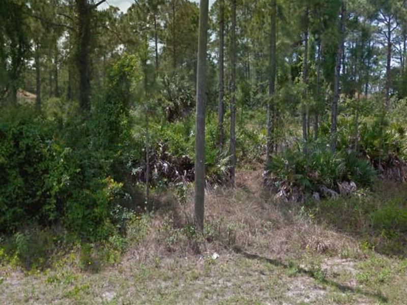 Lee County, Fl $24,999 Neg : Lehigh Acres : Lee County : Florida