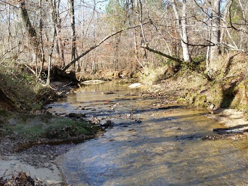 165+/- Acres Timberland : Alexander City : Tallapoosa County : Alabama