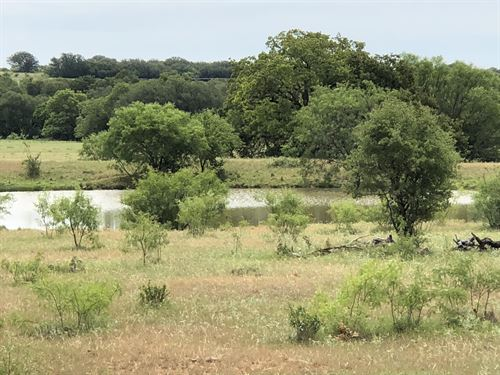 330+ Acre Ranch In Brown County : Blanket : Brown County : Texas