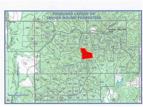 20.60 Acre, Tract 33, Mini-Fa : Brandon : Rankin County : Mississippi