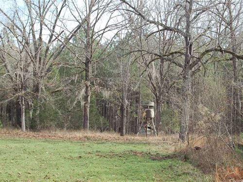 Fitzpatrick Honey Hole : Fitzpatrick : Macon County : Alabama