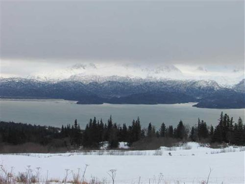 Great Opportunity For The Right Pe : Homer : Kenai Peninsula Borough : Alaska