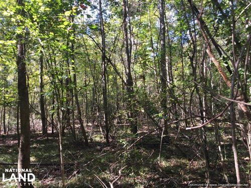87.5 Acres in Attala County : West : Attala County : Mississippi