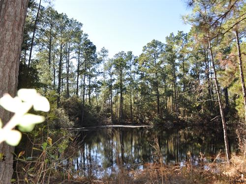 174 Acres Hopewell Road : Huntsville : Walker County : Texas