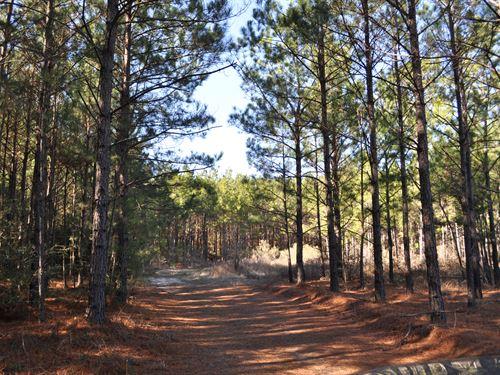148 Ac Hopewell Road : Huntsville : Walker County : Texas