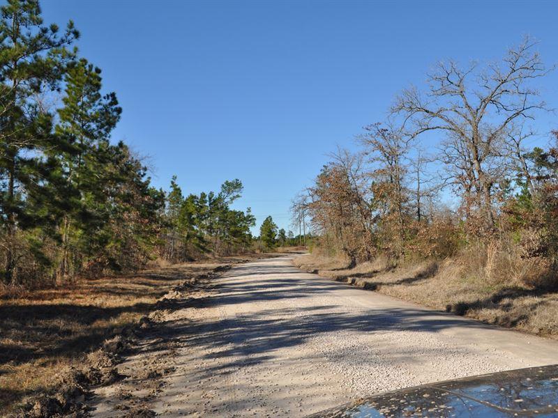 164 Ac Hopewell Road : Huntsville : Walker County : Texas