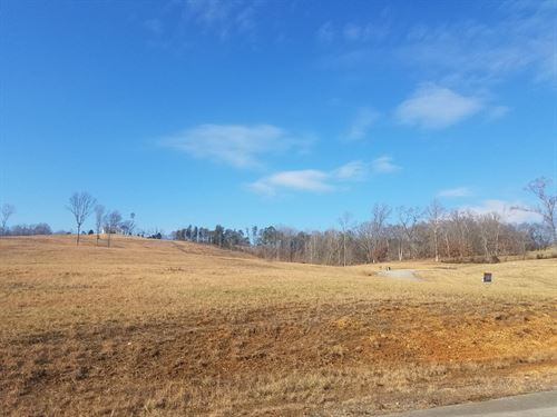 1.30 Acre Corner Lot With View : Whitesburg : Hawkins County : Tennessee