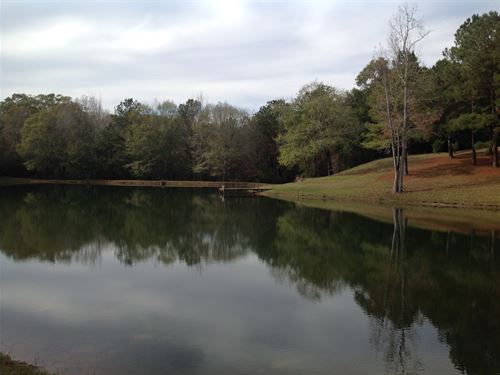38 Acre Homestead With A Pond : Valley Grande : Dallas County : Alabama