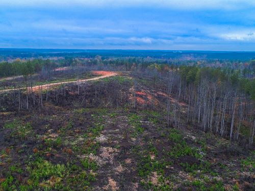 New Plantations With Great Views : Winnsboro : Fairfield County : South Carolina