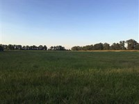 16 Cleared Acres Right Outside : McRae : White County : Arkansas