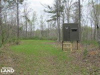 Hinds County Turn-Key Hunting Land : Utica : Hinds County : Mississippi