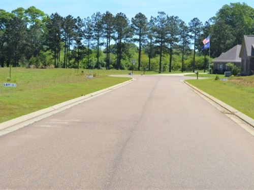 Golf Course Lots For Sale Fernwood : Fernwood : Pike County : Mississippi