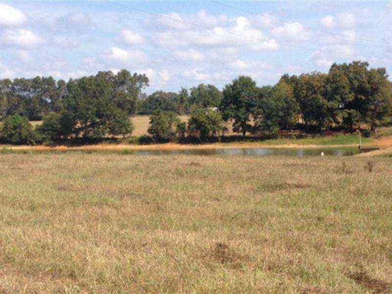 37+/- Ac With 4 Ac Pond : Brundidge : Pike County : Alabama
