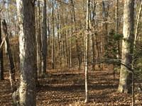 Quail Manor, North Tract : Rienzi : Alcorn County : Mississippi