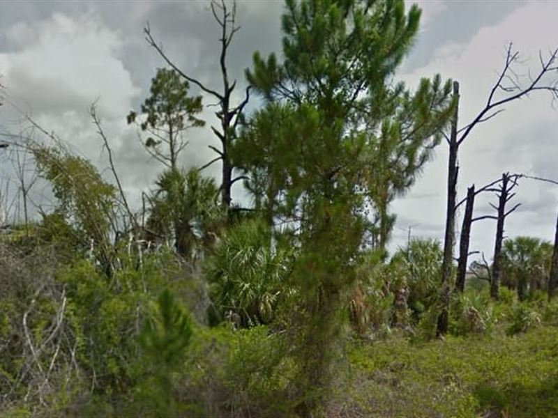 Brevard County, Fl $70,000 Neg : Palm Bay : Brevard County : Florida