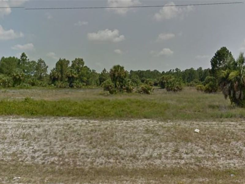 Collier County, Fl $50,000 Neg : Naples : Collier County : Florida