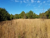 77.48 Acres in York County : York : York County : South Carolina
