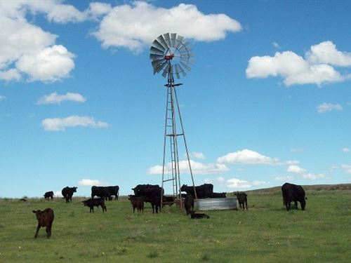 Harper County Land : Gate : Harper County : Oklahoma