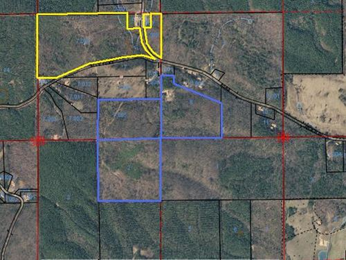 100 +/- Acres Cherokee County, Al : Gaylesville : Cherokee County : Alabama