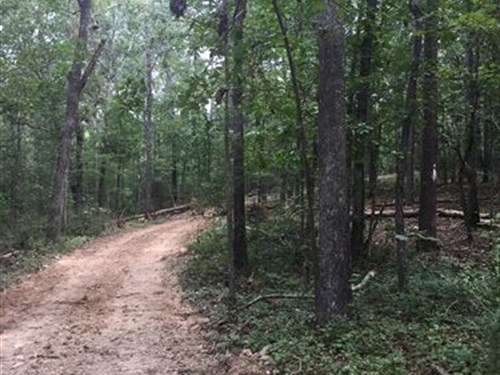 18.88 +/- Acres Polk County, Ga : Cedartown : Polk County : Georgia