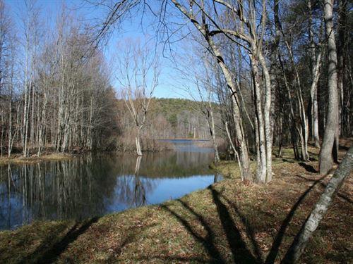 50.47Ac Lake Front, Creek, Views : Spencer : Van Buren County : Tennessee