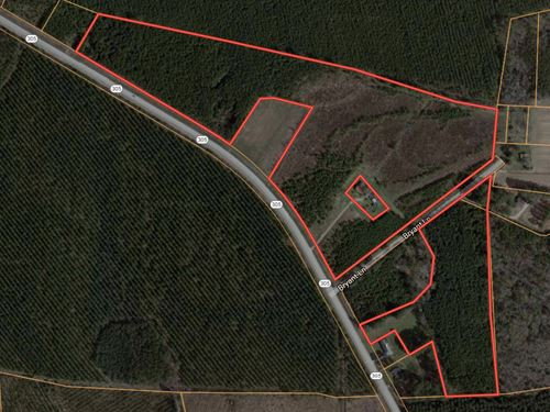 Hunting Land For Sale In Bertie Co : Aulander : Bertie County : North Carolina