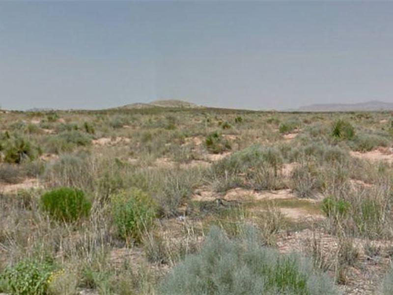 El Paso County, Tx $100,000 Neg : El Paso : El Paso County : Texas