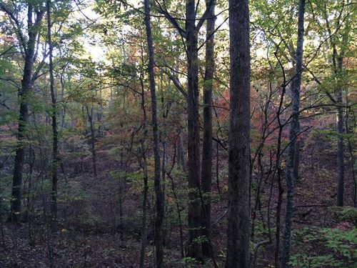 Garland Mountain 4.26+/- Acres : Waleska : Cherokee County : Georgia