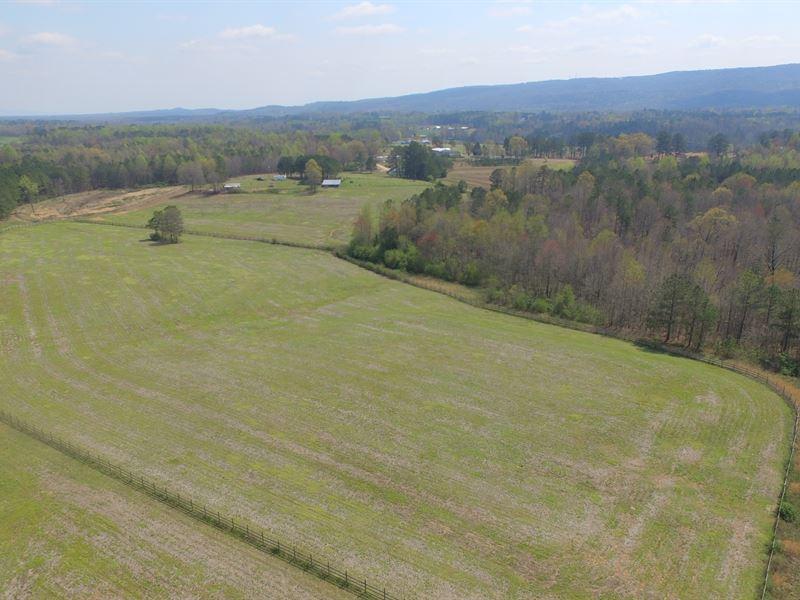 80+/- Tomey Farm : Collinsville : Cherokee County : Alabama