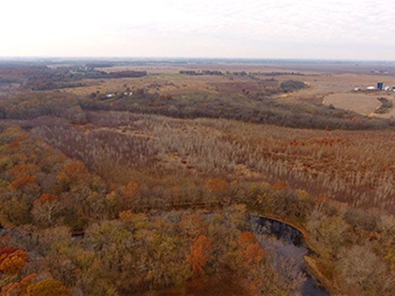 Major Illinois Land Auction : Champaign : Piatt County : Illinois