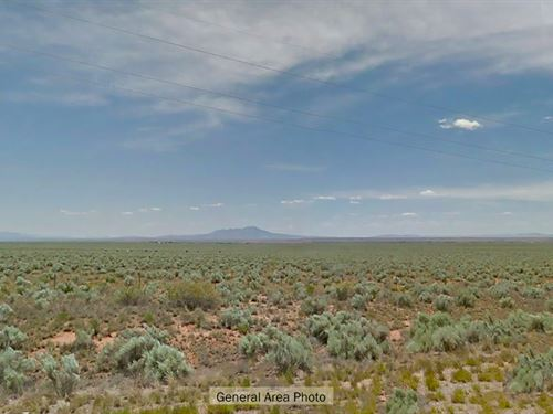 One Acre Retreat In New Mexico : Belen : Valencia County : New Mexico