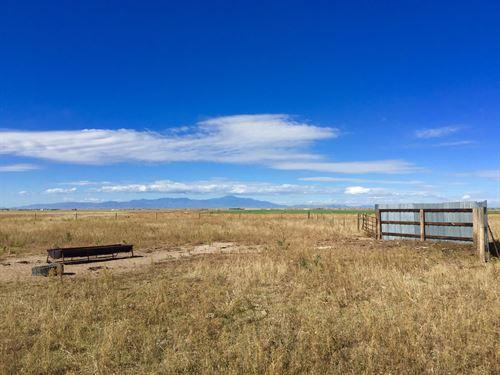 Brackett Creek Half Section : Calhan : El Paso County : Colorado