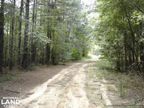 120 ac Hunting And Timber Land Near : Winona : Montgomery County : Mississippi