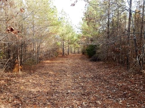 125 Acres In Newton County In Coneh : Conehatta : Newton County : Mississippi