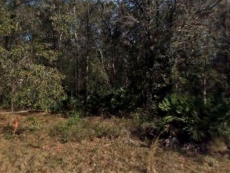 Saint Johns County, Fl $44,999 Neg : Hastings : Saint Johns County : Florida