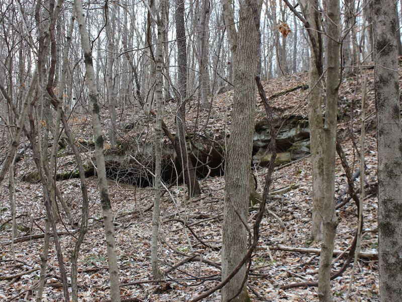 Sr 792 - 17 Acres : Stockport : Morgan County : Ohio