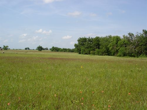 Country Acreage Ready To Build For : Sumner : Lamar County : Texas