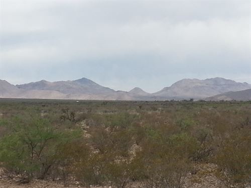 20 Acres On Road, Electric $248/Mo : Sierra Blanca : Hudspeth County : Texas