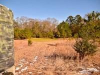 77 Acres Independence, Al : Prattville : Autauga County : Alabama