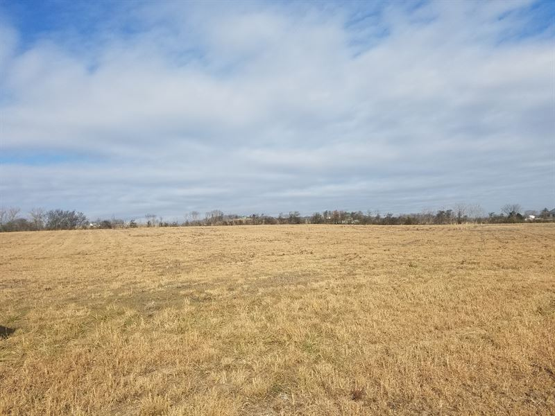 Almost 1 Acre Cleared Level Lot : Whitesburg : Hawkins County : Tennessee
