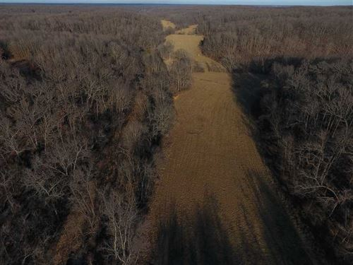 Great 40 Acre Hunting Tract With : Versailles : Morgan County : Missouri