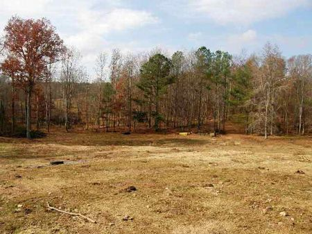 Ac140- 100 Acres With 3 Acre Lake : Muscadine : Cleburne County : Alabama