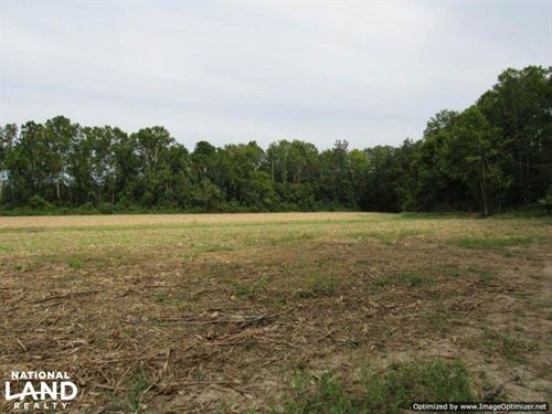 620 ac Ag & Timber - Montgomery Co : Kilmichael : Montgomery County : Mississippi