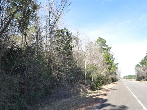 785 Ac Sh 326 Big Thicket : Kountze : Hardin County : Texas