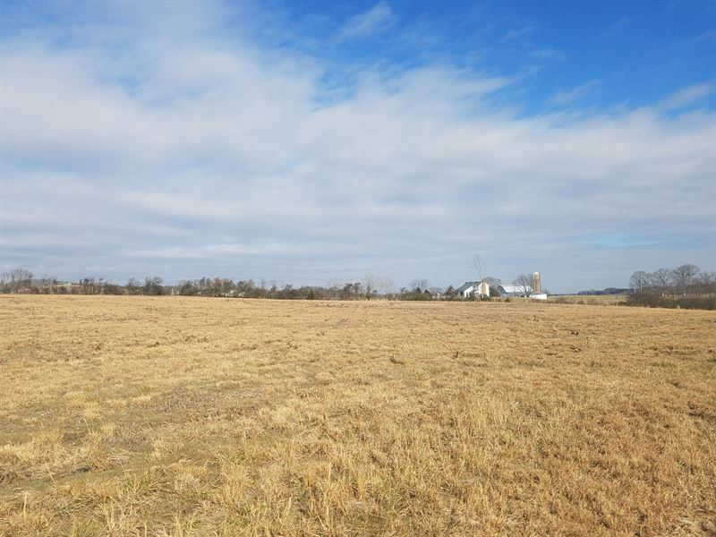 Cleared Level Lot With Mtn Views : Whitesburg : Hawkins County : Tennessee