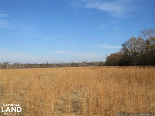 Goodman Pasture Land : Goodman : Holmes County : Mississippi