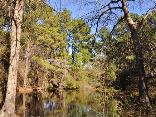 51 Ac A T Fussell Road : Groveton : Trinity County : Texas