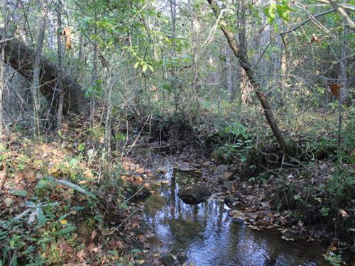75+/- Acres Timberland : Ashland : Clay County : Alabama