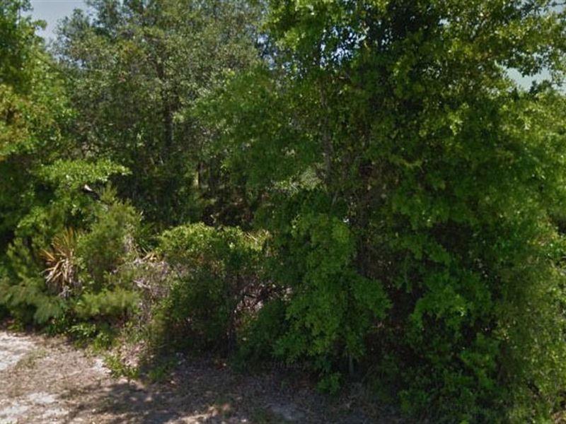 Escambia County, Fl $58,000 Neg : Pensacola : Escambia County : Florida
